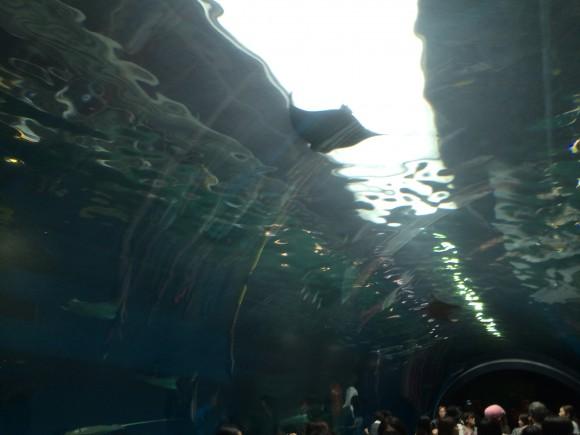 aquapark_04